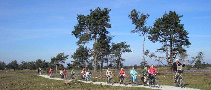 Drents-Friese Wold fietsen