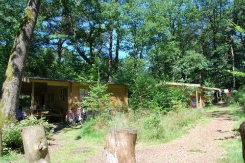 Camping Diever blokhut