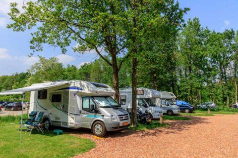 Camping Reeënwissel camperplaatsen