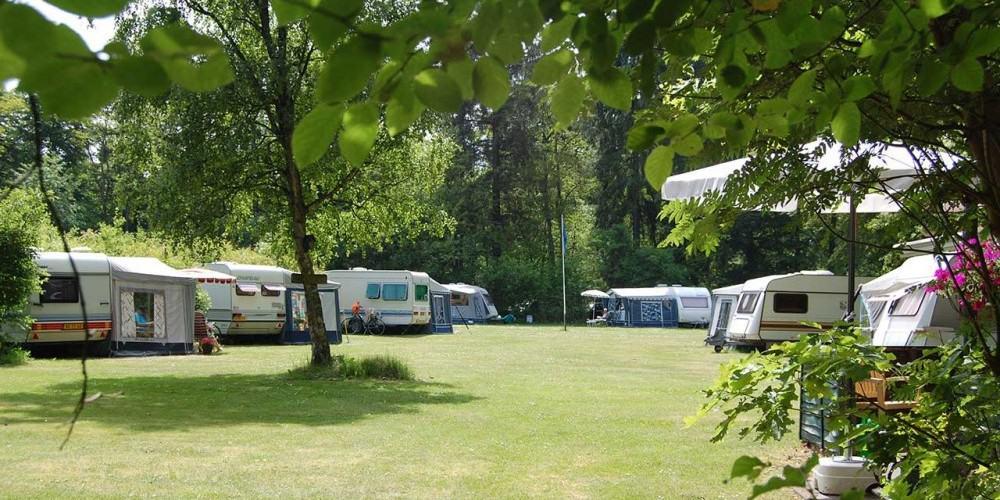 Boscamping Appelscha kampeerplaats