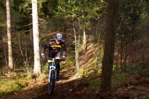 Camping De Reeenwissel mountainbiken