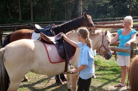 Camping De Reeenwissel paardrijles