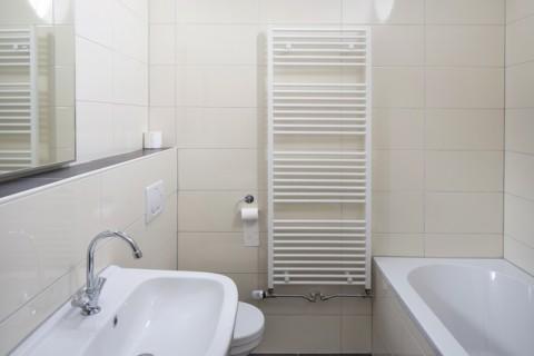 Vakantiehuis Goede Weide badkamer met bad