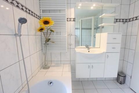 Vakantiepark Bosmeer badkamer