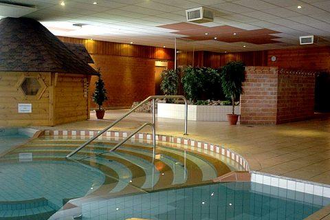 Sauna Het Friese Woud binnenzwembad
