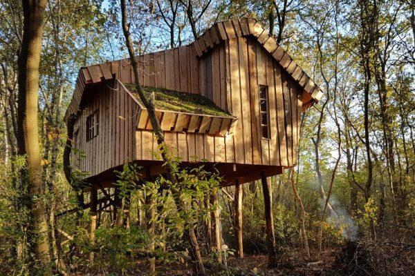 BoomhutXXL in het bos van Hoogersmilde