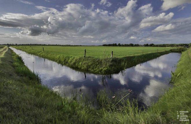 Grasland Wapse Fotograaf Ilma Meijer