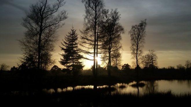 Zonsopkomst In December Op Het Aekingerzand Fotograaf Fred Wubben 1