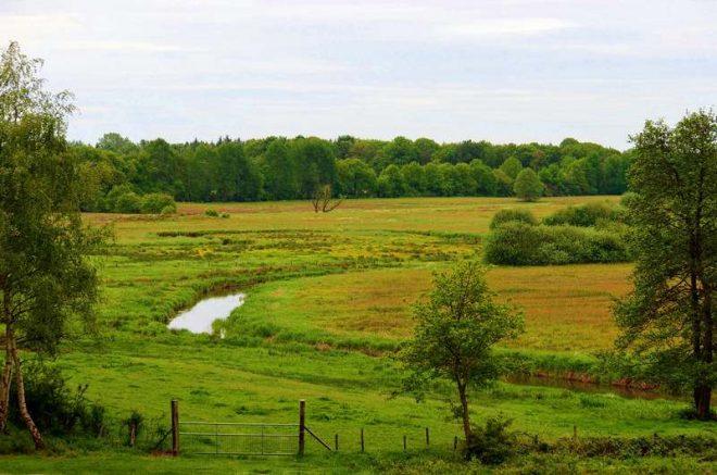 Landschap Schipborg Fotograaf Toli Schanssema