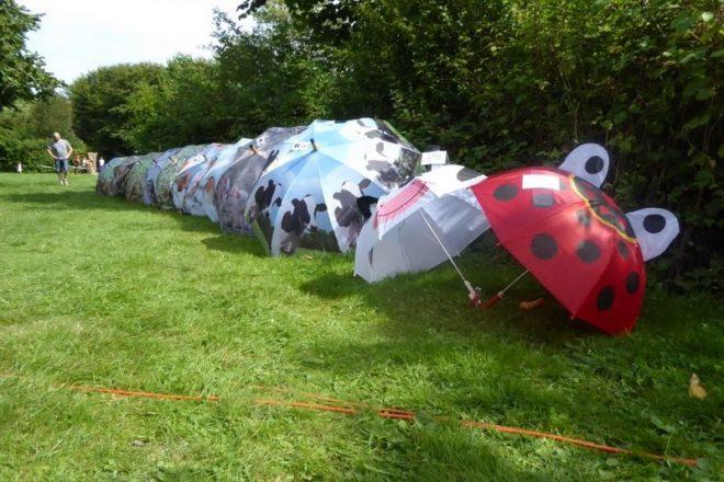 Parapluus Op Een Rijtje Drogend In De Zon Fotograaf Jan Van Es