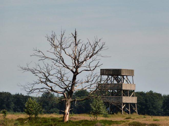 Uitkijktoren Aekingerzand Fotograaf Jet Van Ommen