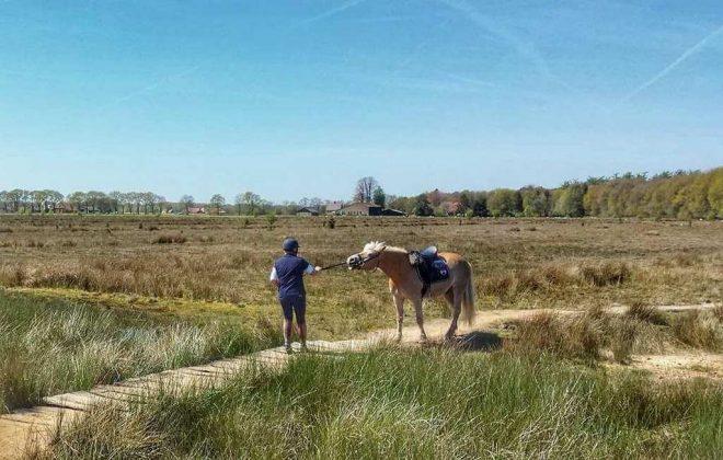 Fotograaf Esmee Oord Samen Door Het Water Met Paard