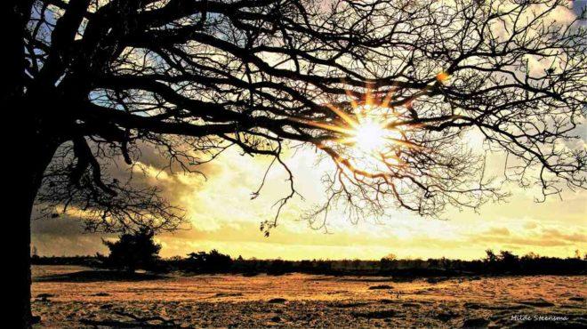 Ondergaande zon Aekingerzand - Fotograaf Hilde Steensma