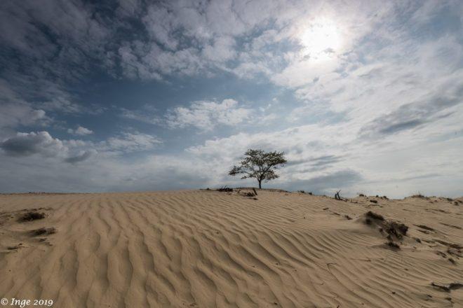 Wolkenlucht boven Aekingerzand - Fotograaf Inge De Goed