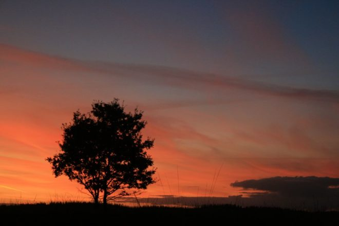 Ondergaande Rode Zon - Fotograaf Josefien Spoelder