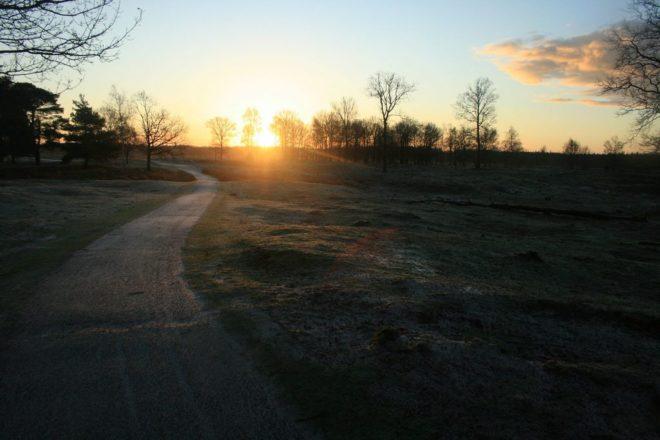Zonopkomst Drents Friese Wold - Fotograaf Josefien Spoelder